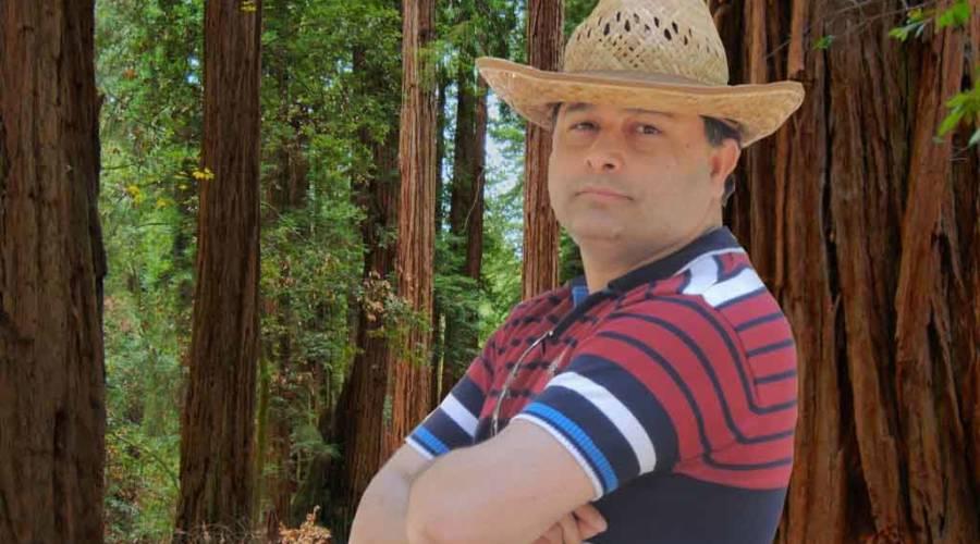 redwood-national-park-california_edited